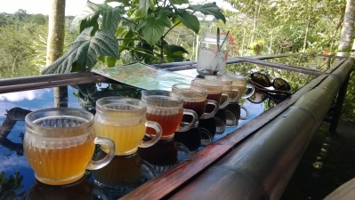 Different samples of tea and coffee