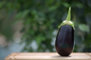 Eggplant used for making Imam Bayildi