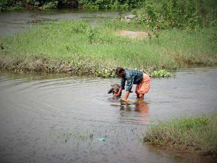 Kalpathy river