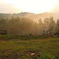 Mountains, Biriyani and a Road to Yercaud